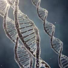DNA (ilustr. 123rf.com)