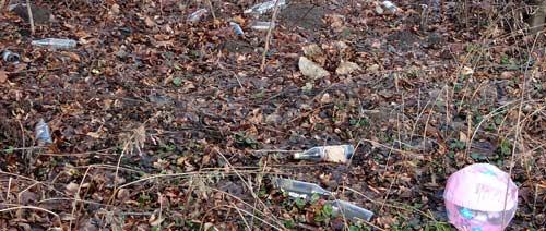 podłódzkie śmieci (fot. Nacho)